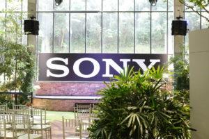Sony RX10 Mark IV Camera Sample_3